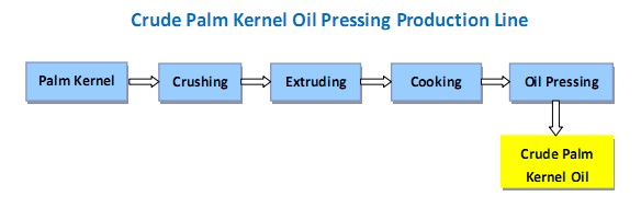 crude-palm-kernel-oil-pressing-production-line
