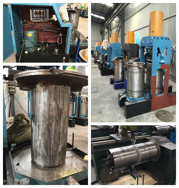 cold press oil machine